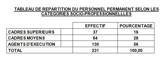 TABLEAU DE REPARTITION DU PERSONNEL PERMANENT SELON LES CATEGORIES SOCIO-PROFESSIONNELLLES