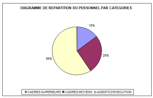 DIAGRAMME DE REPARTITION DU PERSONNEL PAR CATEGORIES