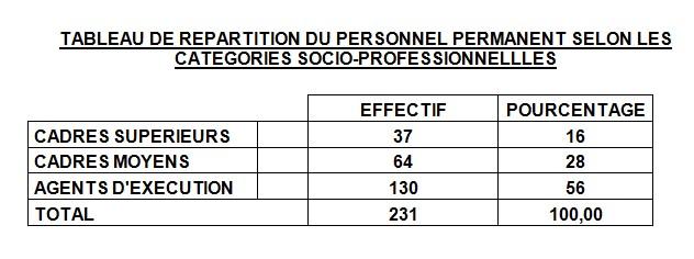TABLEAU DE REPARTITION DU PERSONNEL PERMANENT SELON LES CATEGORIES SOCIO-PROFESSIONNELLLES