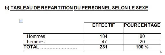 TABLEAU DE REPARTITION DU PERSONNEL SELON LE SEXE